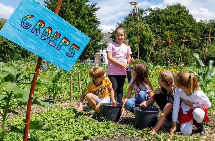 3000 scholen en bso's blij met zadenpakketten Rijk Zwaan